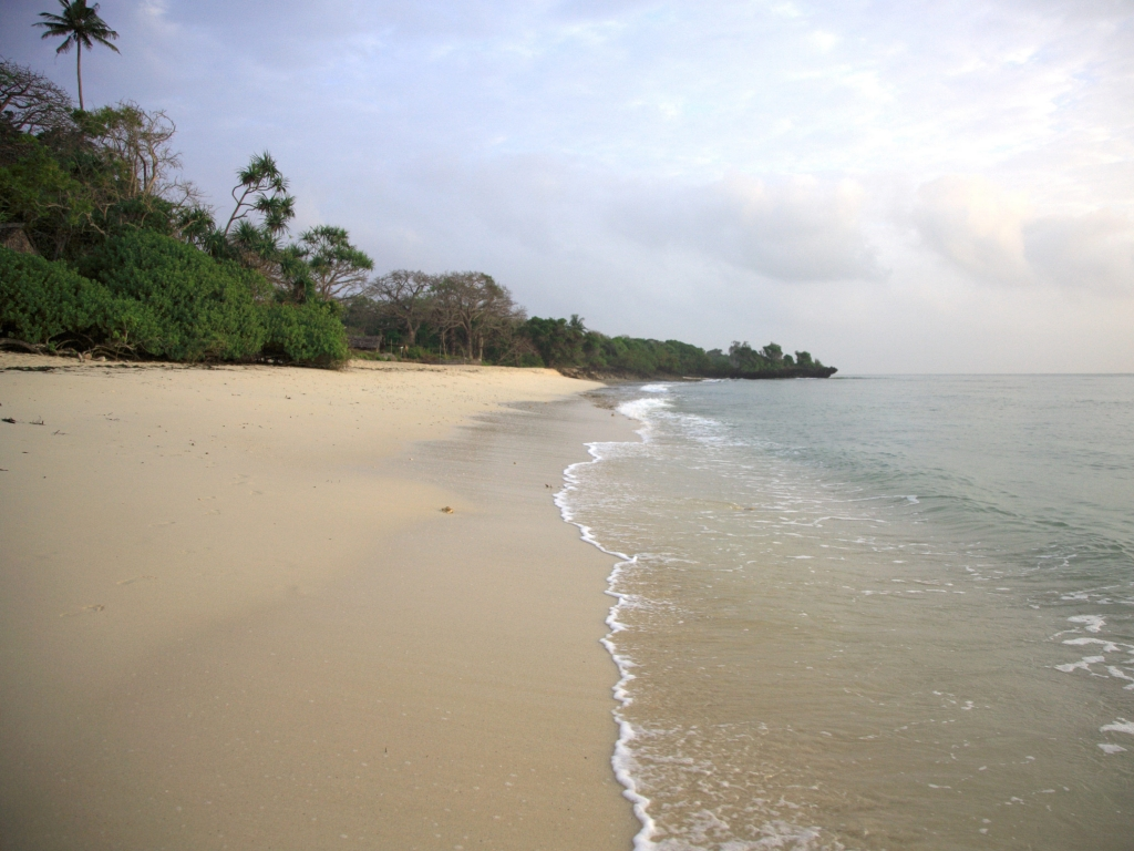 Arrivée sur les plages de l'Océan Indien
