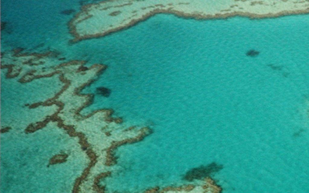 Survol de la Grande Barrière en hydravion.