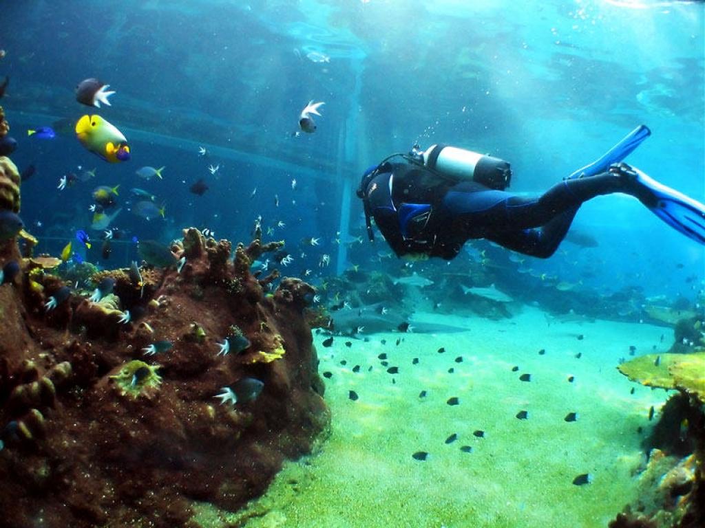 Route vers les rives du Ningaloo Marine Park