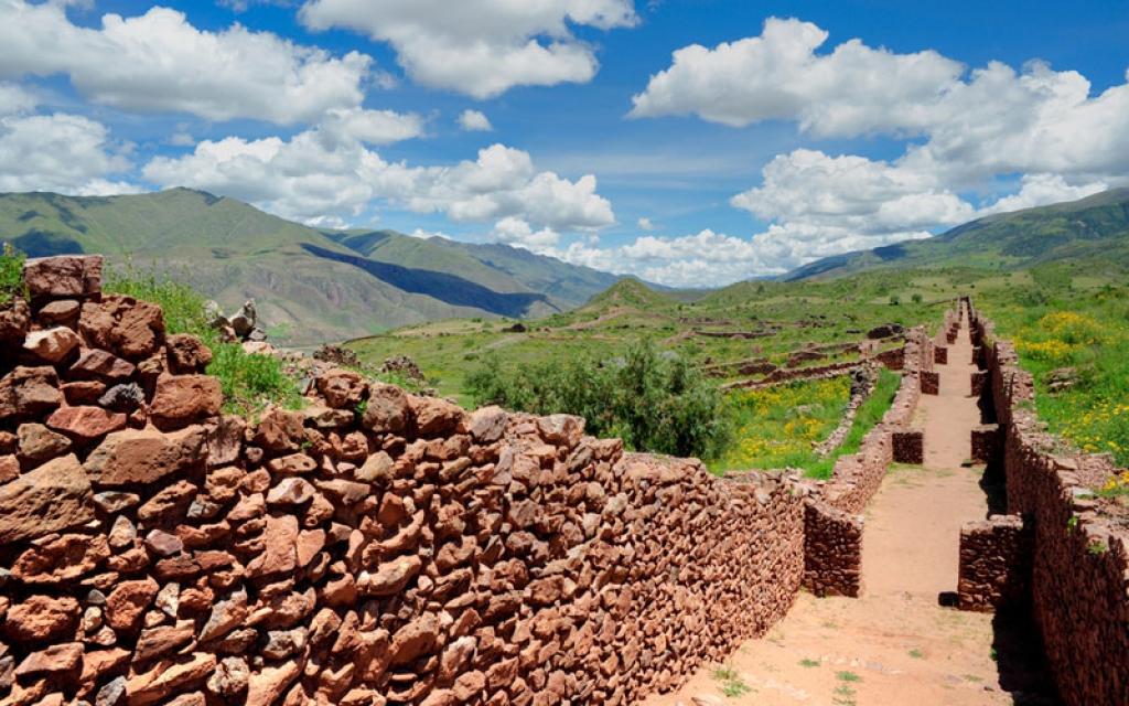 Cheval à Cusco