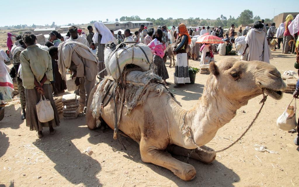 Arrivée à Addis Abeba