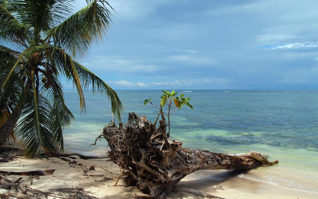 En bord de mer des Caraïbes