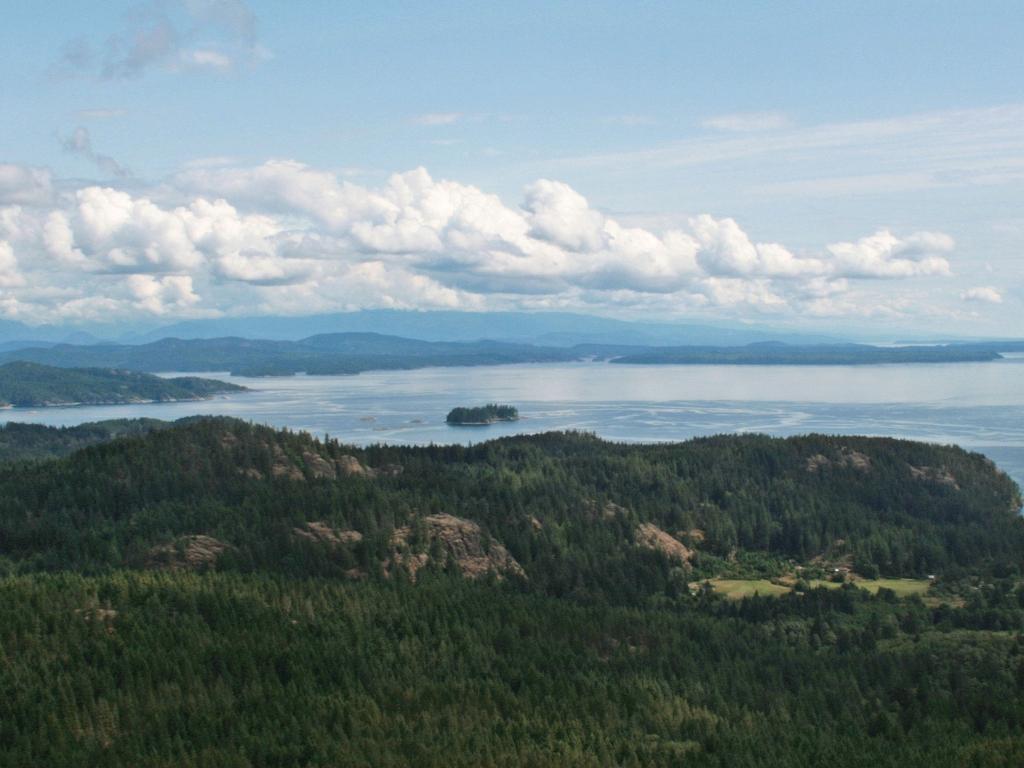 Route vers Tagish Lake (143km)