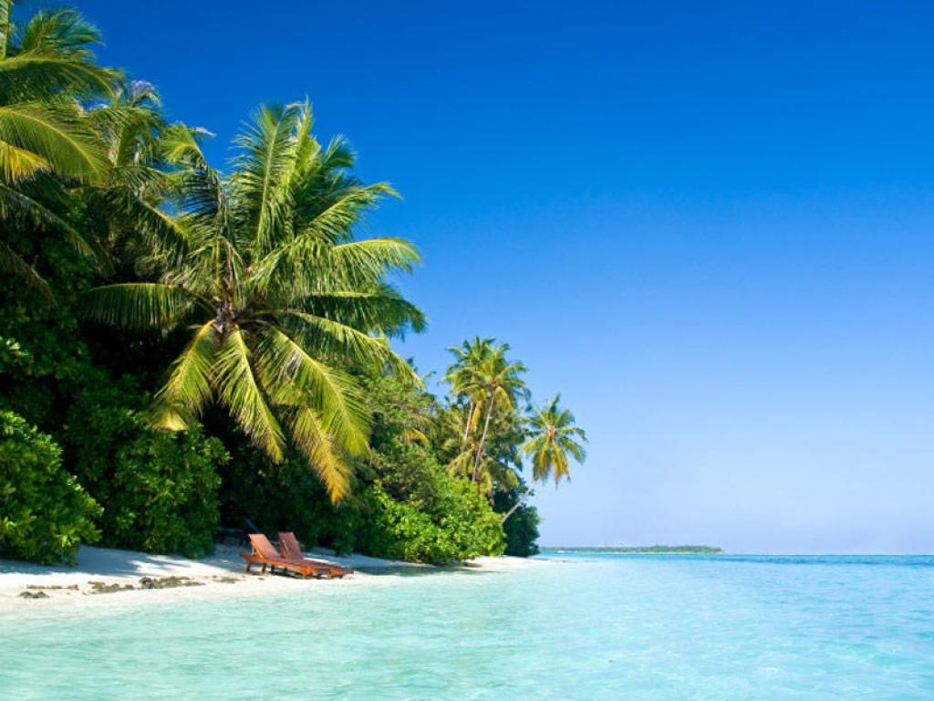 Journée libre à la plage (extension)