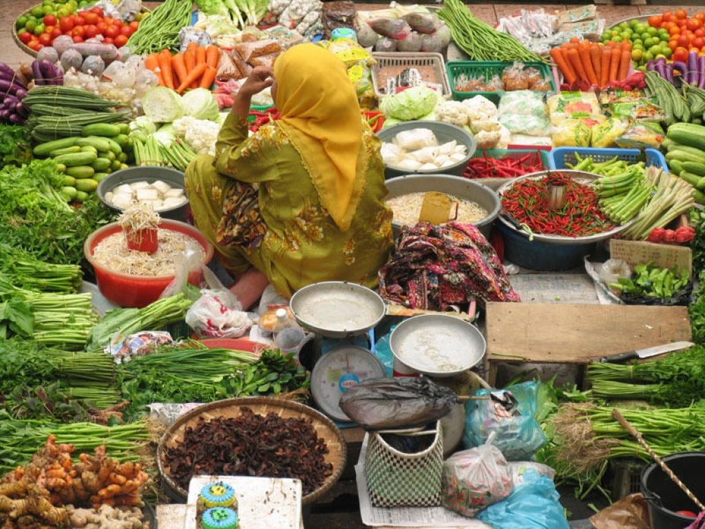 Arrivée à Bornéo et visite de Kuching