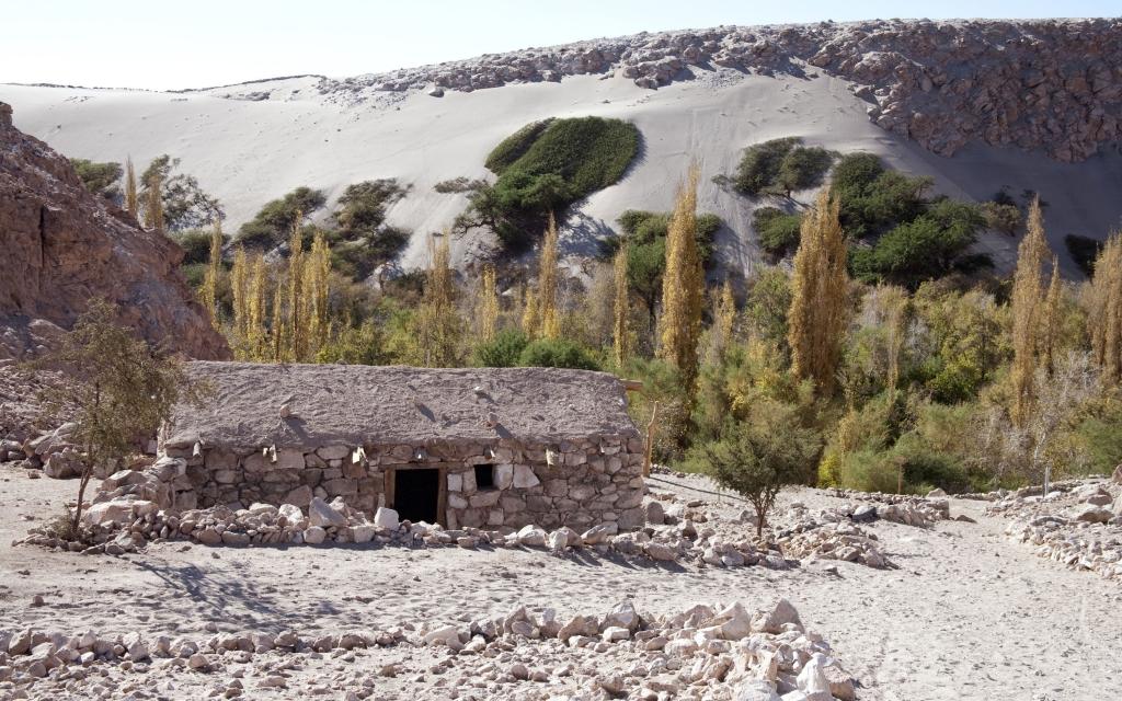 Thermes de Puritama et Salar d'Atacama