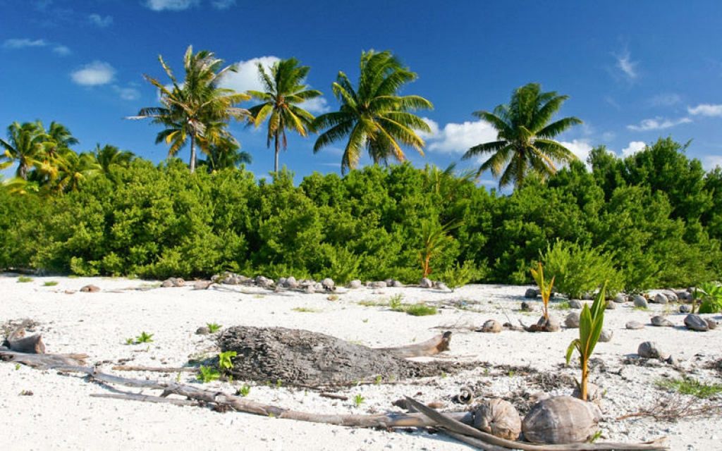 Visite des villages de l'île