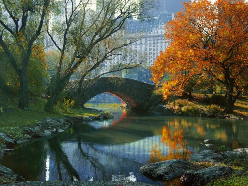 New York Nature ou New York Urbaine, elle sait surprendre !