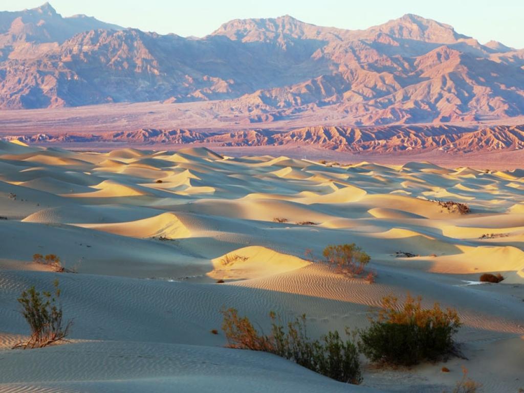 Le désert du Nevada