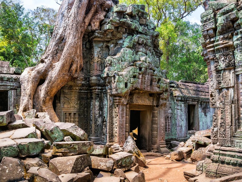 Les plus emblématiques temples d'Angkor
