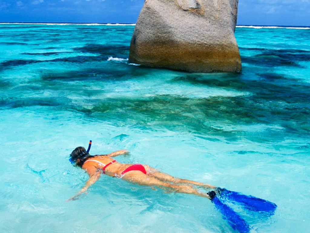 Cocotiers, sable blanc, eaux turquoise : un cadre idyllique !