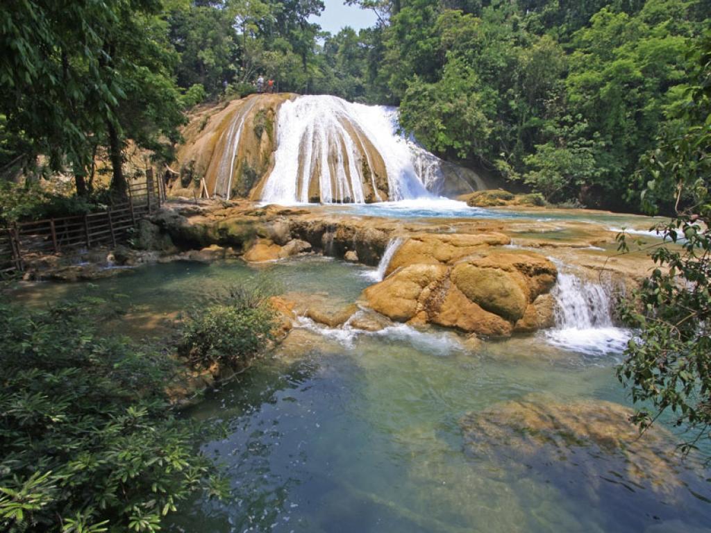 La jungle et les cascades du Chiapas !