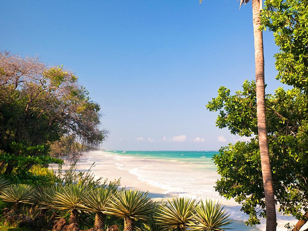Sur la plage de sable blanc