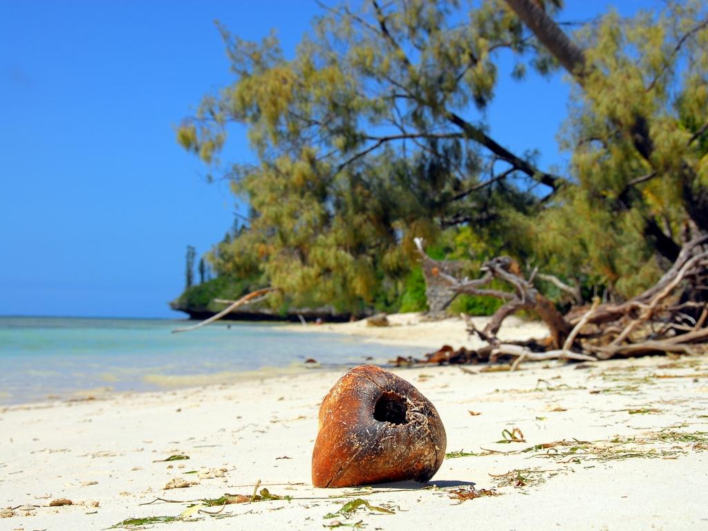 Forêt luxuriante, piscine naturelle et plages à perte de vue