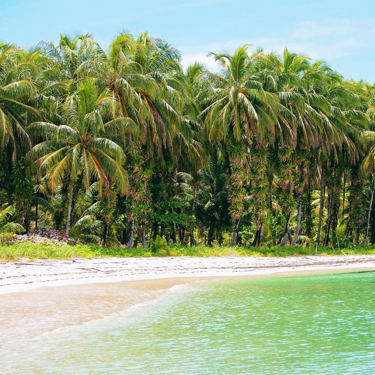Farniente dans les eaux turquoise du Pacifique !