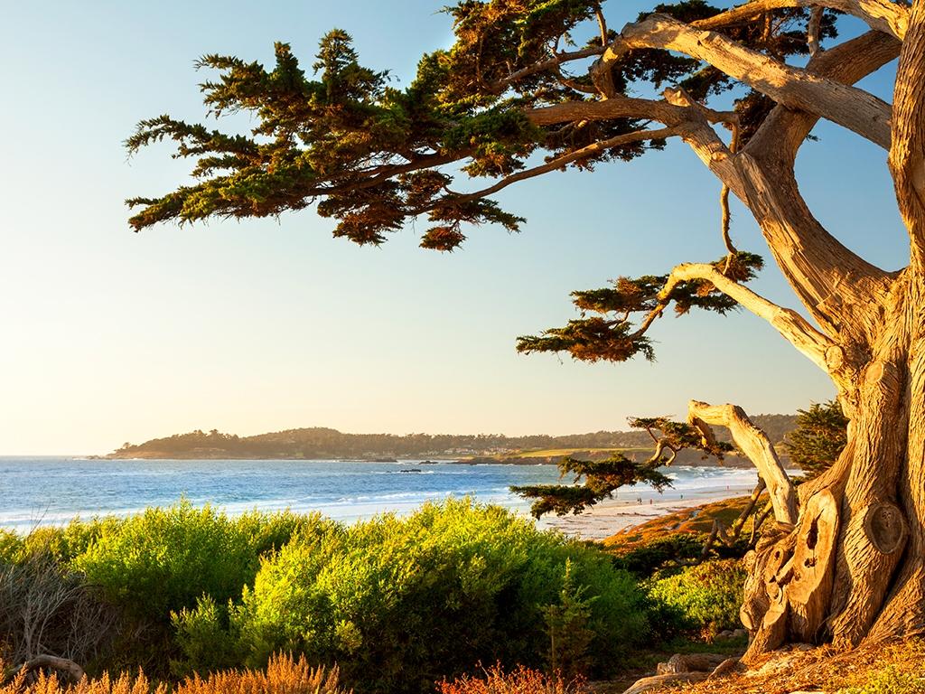 Vers la baie de Monterey