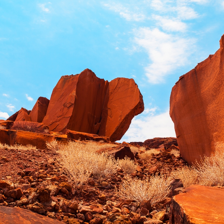 Peintures rupestres et éléphants du désert ! (380 km)