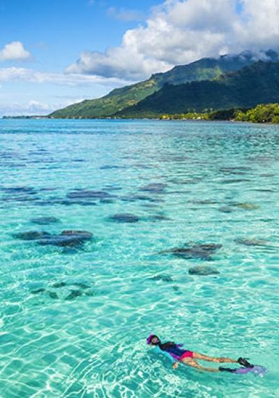 Thématique: Les plus beaux spots de plongée du monde