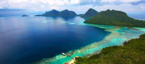 Bornéo Grandeur Nature