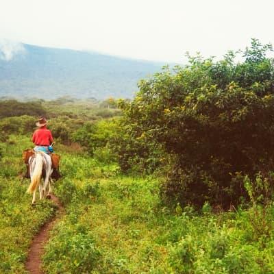 Balade à Cheval à Turrialba
