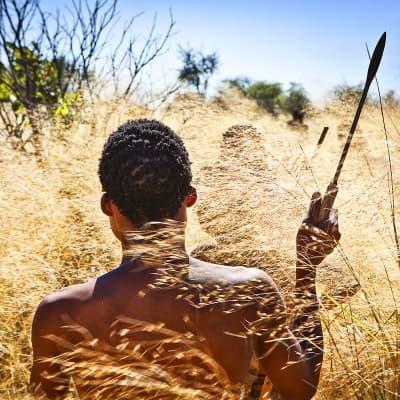 Les activités safari proposées par les Lodges
