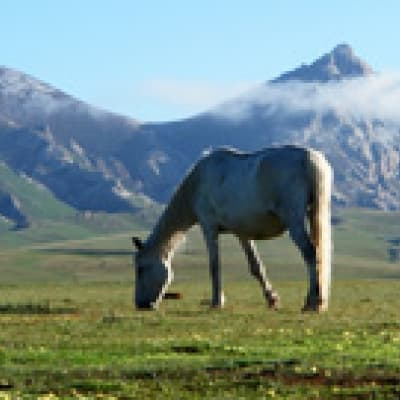 Balade à cheval en Kirghizie