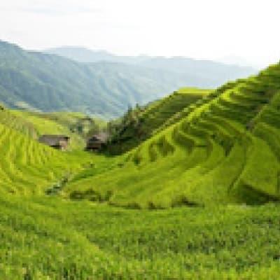 Randonnée de Ping'an à Dazhai