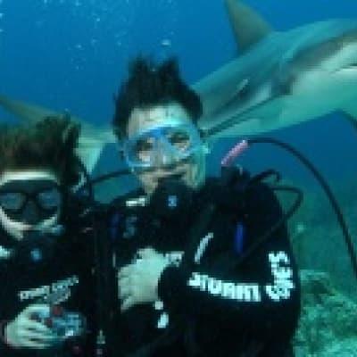 Plongée avec les requins à Shanghai