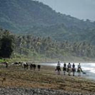 Balade à cheval à Playa Negra