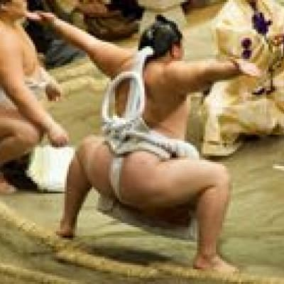 Watch a sumo match in Tokyo
