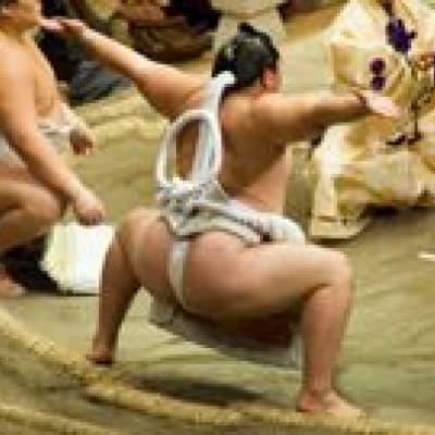 Watch a sumo match in Tokyo