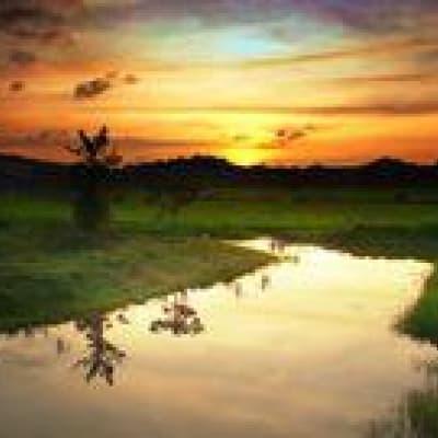 Croisière sur la rivière Klias