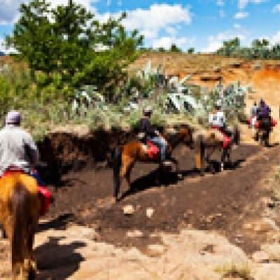 Promenade à cheval - Sarraméa