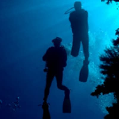Plongée sous-marine et snorkeling - Mombasa