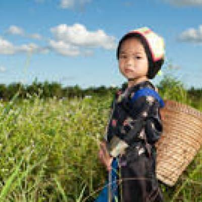 4X4 jusqu'aux villages Ikhos et Hmongs