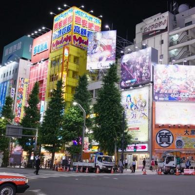 Demi-journée de visite du quartier d'Akihabara