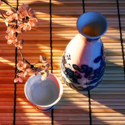 Dégustation de saké à Takayama