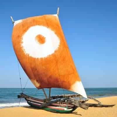 Sortie en catamaran