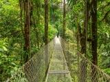 Splendeurs du Costa Rica