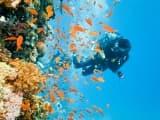 Lagons multicolores des Tuamotu