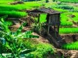Combiné Vietnam et Laos
