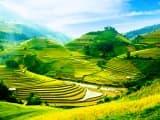 Le Vietnam, de villages en rizières