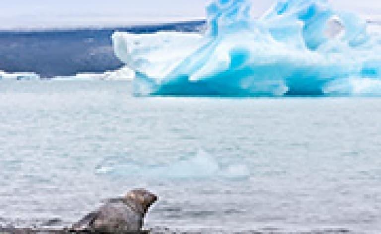 Croisière sur le lac glaciaire Jökulsarlon