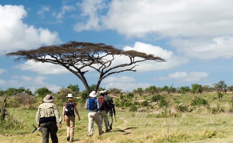 Safari à pied dans le Grumeti