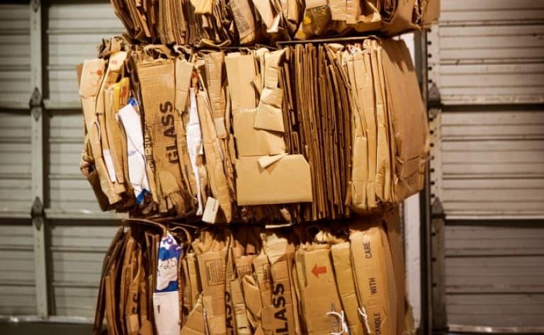 Visite d'une manufacture de papiers