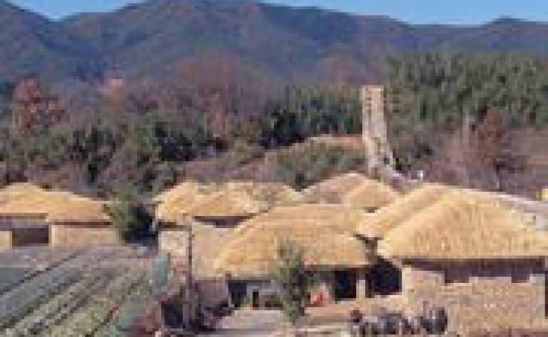Visite de la ferme écologique Chiiori