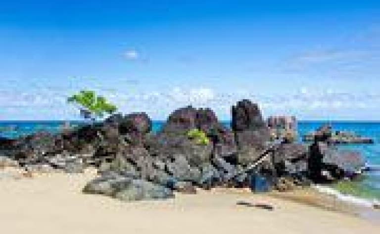 L'île aux Nattes