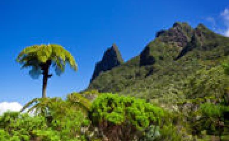 Survol de la Réunion en hélicoptère
