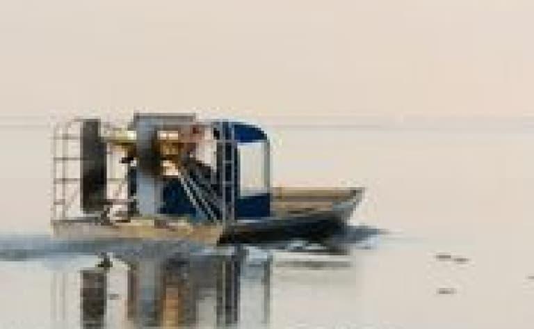 Everglades avec tour en Airboat (réservable par nos soins)
