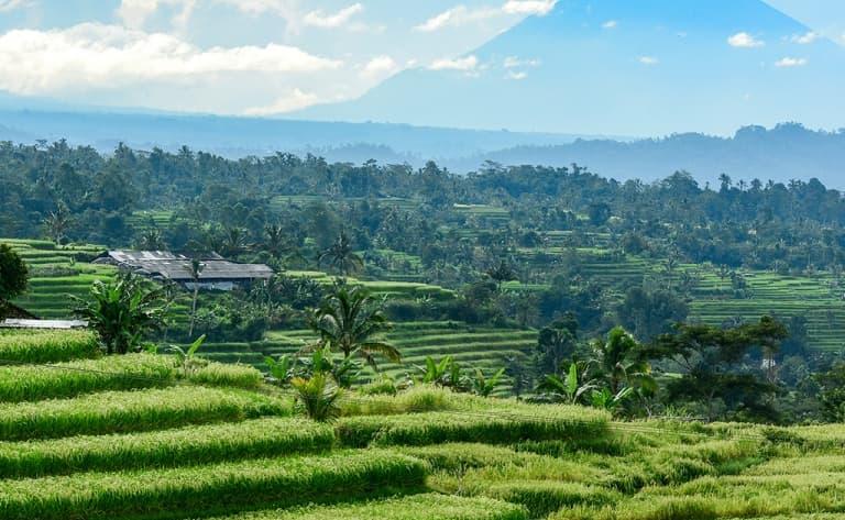 Merveilles naturelles de Bali